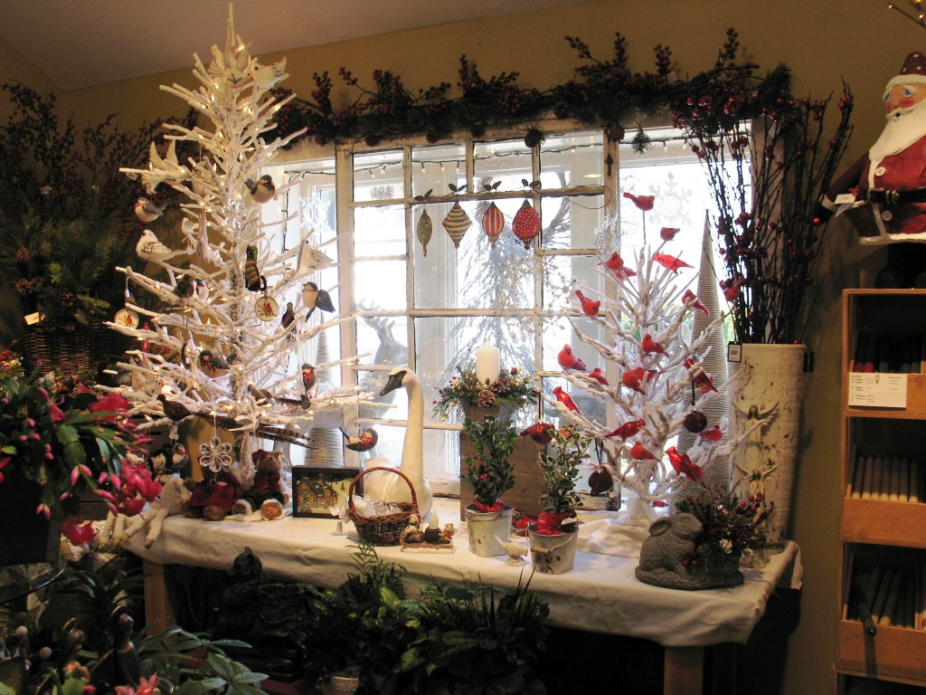 10 Things To Do In December In Columbia County